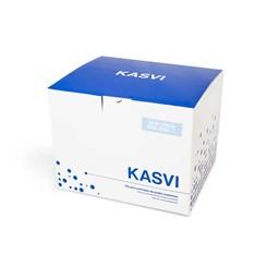 Kit de Extração de DNA Mini Spin Kasvi