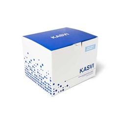 Kit de Extração de DNA  RNA Mini Spin Vírus Kasvi