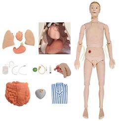 Manequim Bissexual com Órgãos Internos Simulador para Treino de Enfermagem