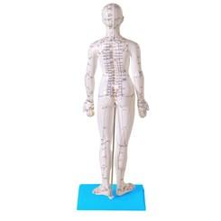 Modelo Acupuntura Feminino 50cm